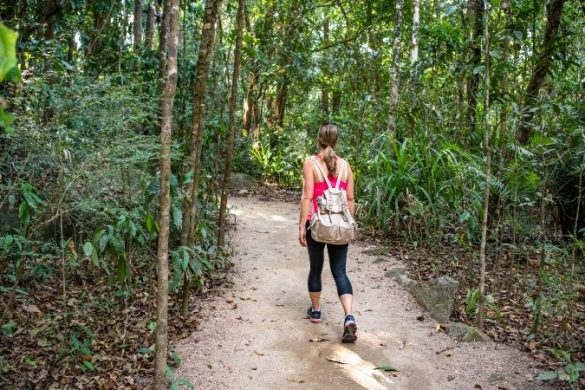 Traveller walking in Mossman Gorge