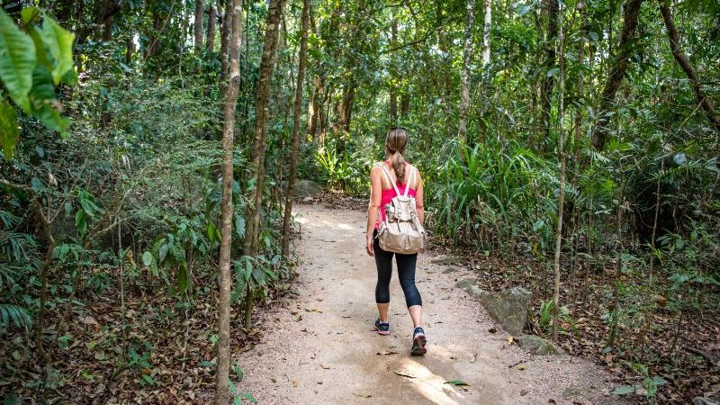 Traveller walking in Mossman Gorge