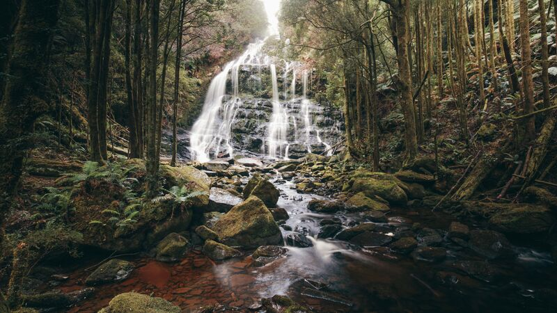 Waterfall in Tasmania