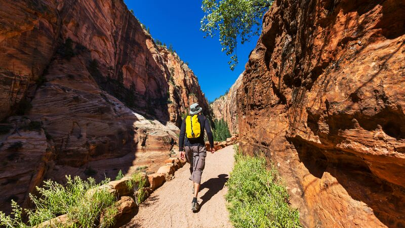 A hiker on a walking trail in Zion National Park