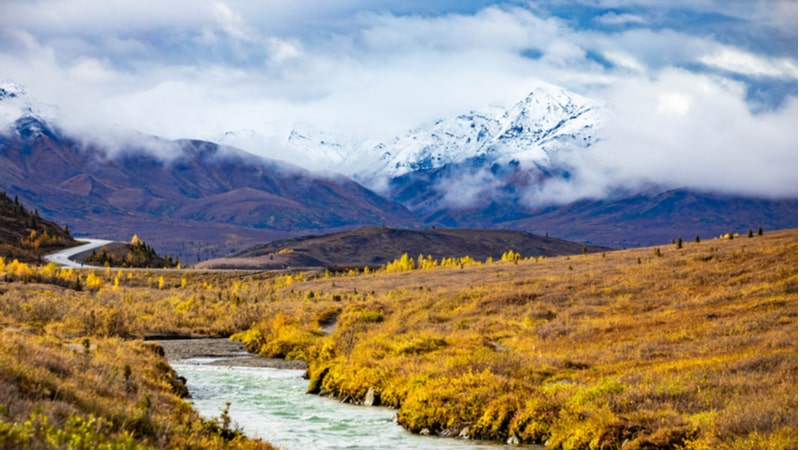 The Savage River Loop Trail in Denali National Park