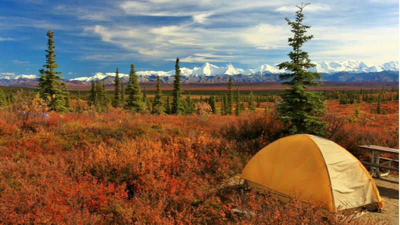 A tent in Denali National Park