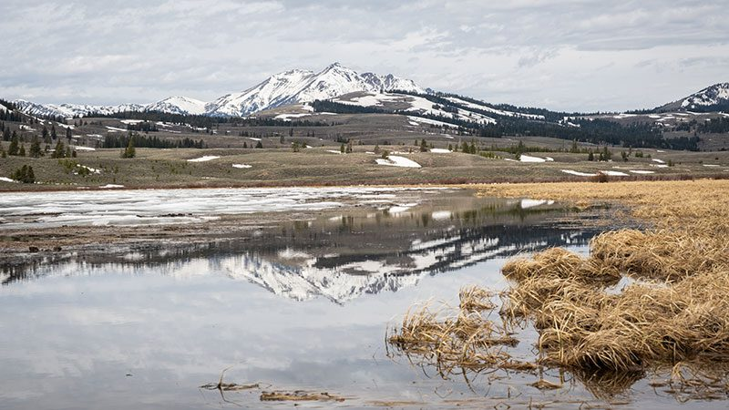 Electric Peak in Yellowstone National Park covered in snow
