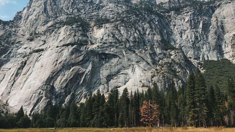 Giant granite cliffs in Yosemite National Park