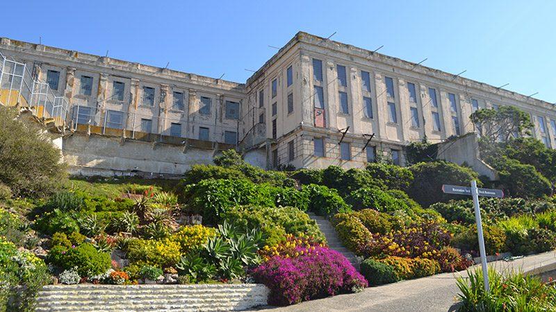 Gardens on Alcatraz Island.
