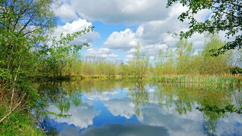 A lake in the Cotswold Water Park in the United Kingdom.