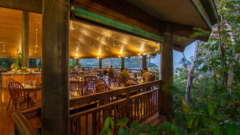 The dining room among the treetops at Osprey's restaurant in Port Douglas.