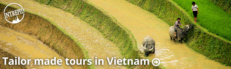 tailor made vietnam