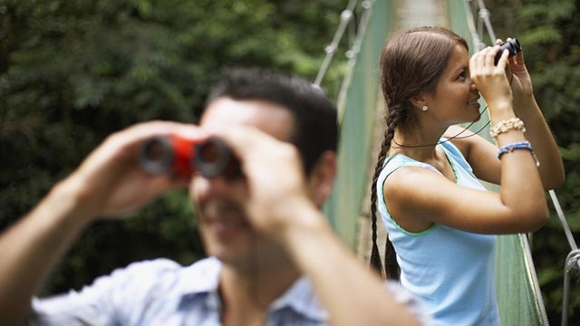 Bird watchers with binoculars on a rope bridge in the middle of the forest