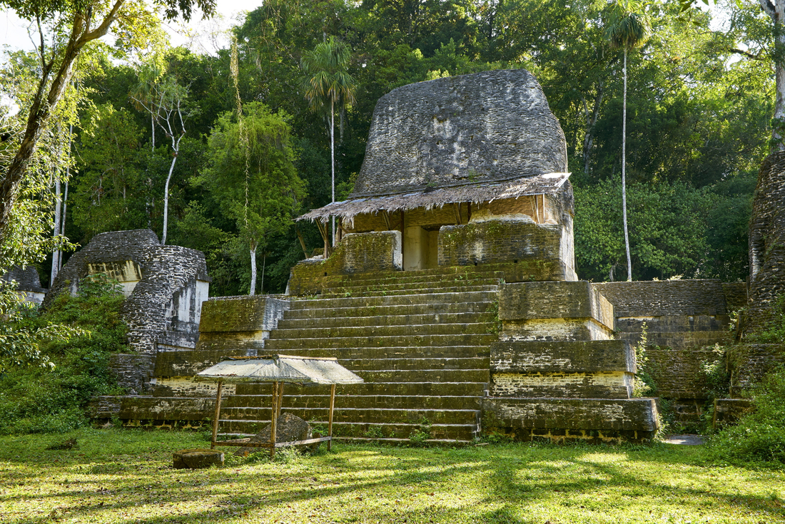 Ruins in the middle of the jungle in Tikal