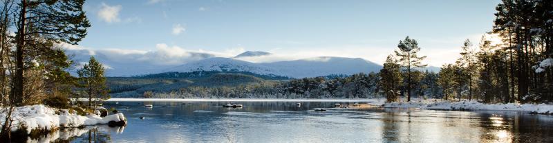BMLA - Scotland Loch Morlich Cairngorms - 1920x500