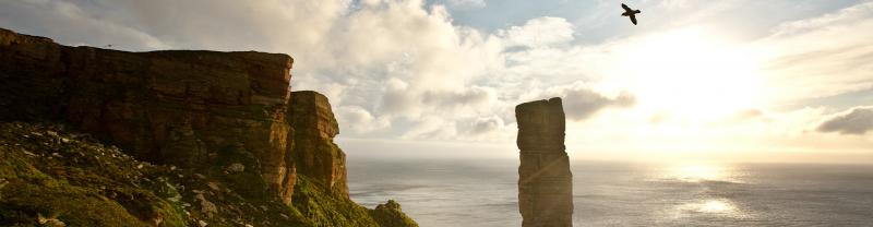 BWSO - Old Man of Hoy Banner - 1920x500