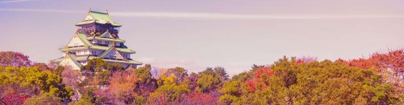 Osaka park autumn