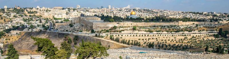 Holy Land Highlights with Intrepid Travel