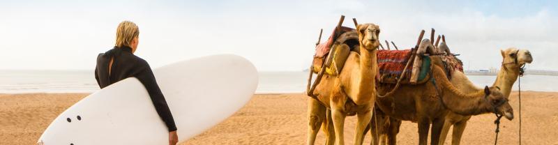 GEMB_morocco_essaouira_beach_surfing_camel