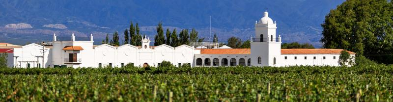 GGPC - View of Mendoza vineyard and winery in Argentina