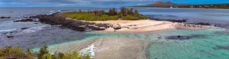 GMQG_ecuador_floreana_island_galapagos