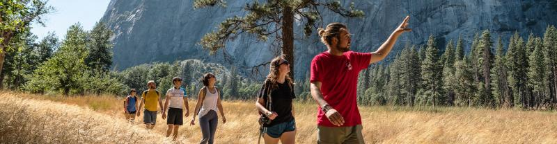 Group of travellers hiking in Yosemite NP with local guide