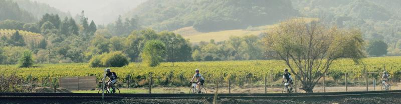 SSXS - Cycling Sonoma and Napa Valley - Banner 1920x500