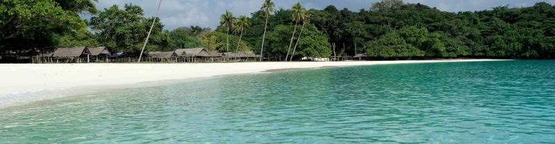 Blue waters and dense forrest of Vanuatu coastline