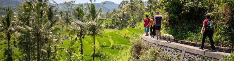 Have an adventure in Bali & Lombok with Intrepid Travel