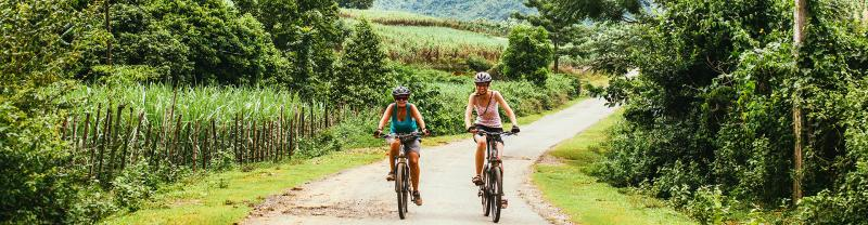 Travellers cycling through the lush vietnamese countryside on an Intrepid Trip.