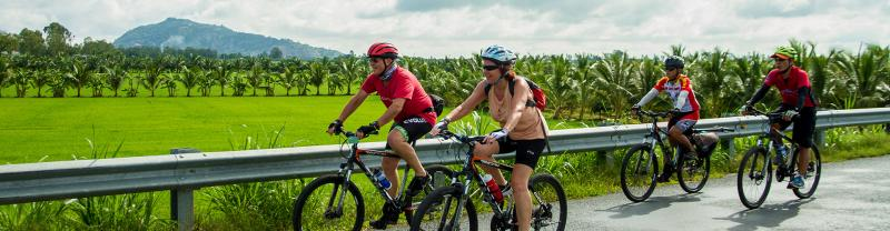 Travellers cycling through the vietnamese countryside on an Intrepid Travel tour