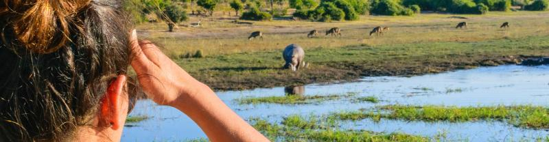 UBPB - Female traveller admiring rhinos from afar, Chobe NP, Botswana