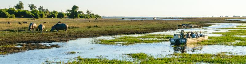 UBPKC - Travellers on river cruise spotting animals in Chobe NP, Botswana