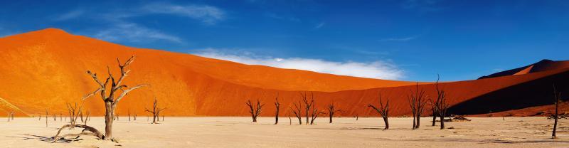 UBPN - Red sand desert Sossusvlei, Namibia