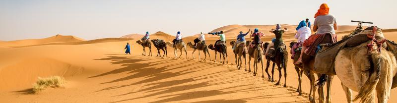 Travellers ride camels through Sahara desert, Morocco