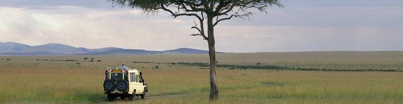 YGPEC - Safari vehicle beside tree, Kenya landscape