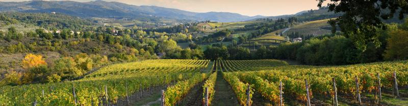 Sunset overlooking the Chianti vineyard region, Tuscany, Italy