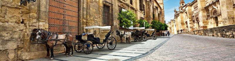 ZMPVC - Horses on the old streets and architecture of Cordoba, Spain