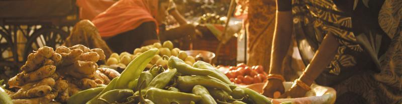 India fresh produce