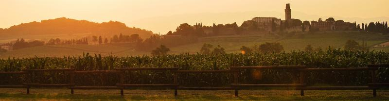 italy_prosseco-hill-sunset