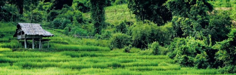 Thailand, green hills
