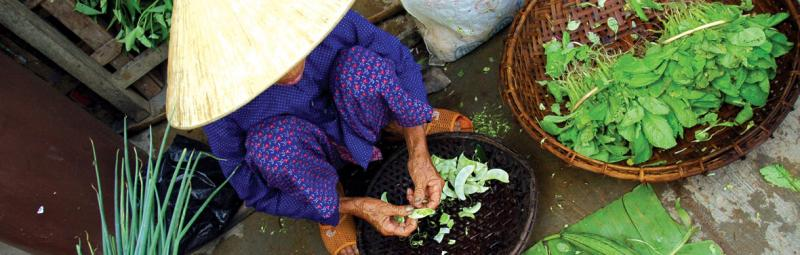 Local vietnamese woman with vegetables