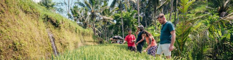 Ubud to Seminyak Tours with Intrepid Travel