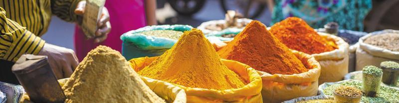 Delhi to KathmanduTours with Intrepid Travel