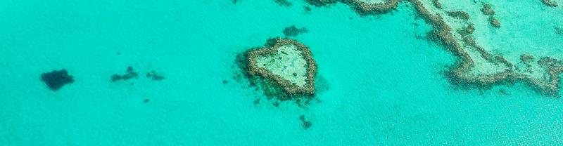 Heart Island on the Great Barrier Reef in Cairns, Queensland