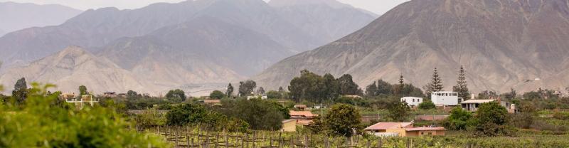 El Sarcay Pisco Distillery in Peru, Lima