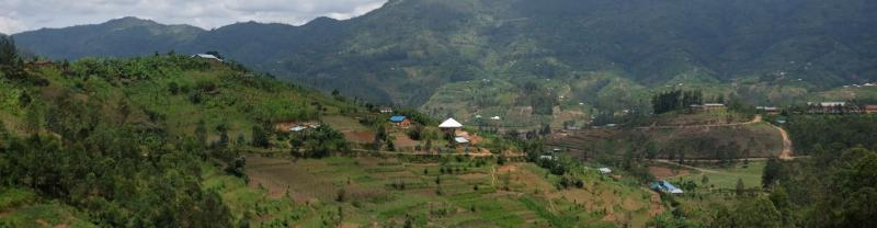 Kigali to Kigali Tours with Intrepid Travel