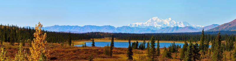 A view of Denali towering over Wonder Lake