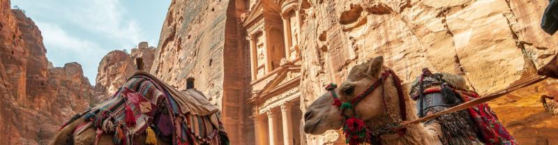 Camels stand in front of Petra, Jordan