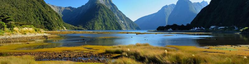 Milford Sound tours with Intrepid Travel