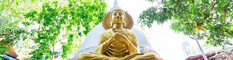Gold Buddha Statue in Colombo Sri Lanka