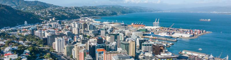 Wellington cityscape on a sunny day in New Zealand.