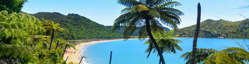 Golden Bay beach in the Abel Tasman