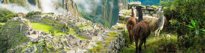 Peru, contest rules